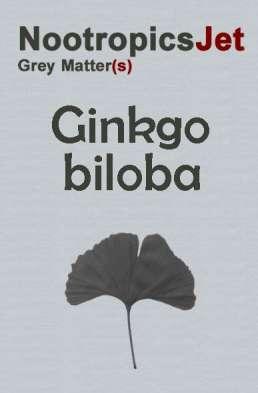 """""""Ginkgo biloba benefits"""""""